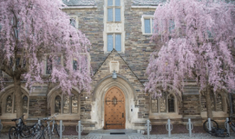 Best Princeton Summer Programs for High School Students