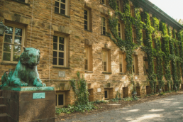 Princeton Courses for High School Students
